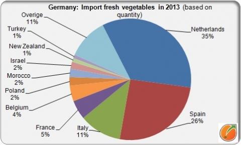 German import fresh vegetables in 2013