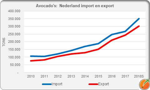 Avocado Netherlands import export