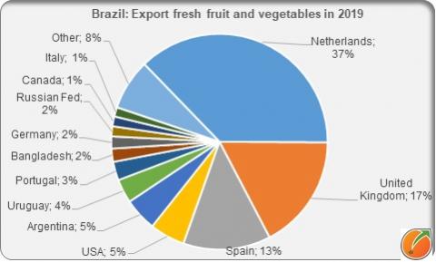 Brazil export frsh fruit and vegetables