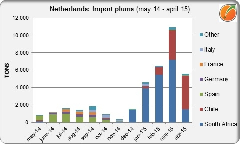 Netherlands import plums