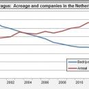 Netherlands asparagus acreage and companies