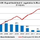 EU Export fresh fruit and vegetables to Russia