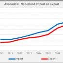 Avocado Netherlands import export