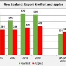 New Zealand export kiwifruit and apples