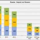 Russia import cut flowers jan may 2015