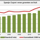 Export fresh fruit and vegetables from Spain